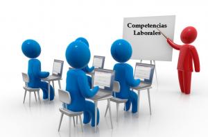 OTRAS COMPETENCIAS PROFESIONALES